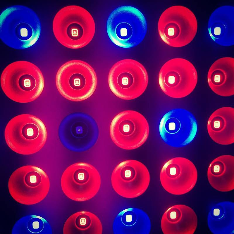 blue-red-led-lights