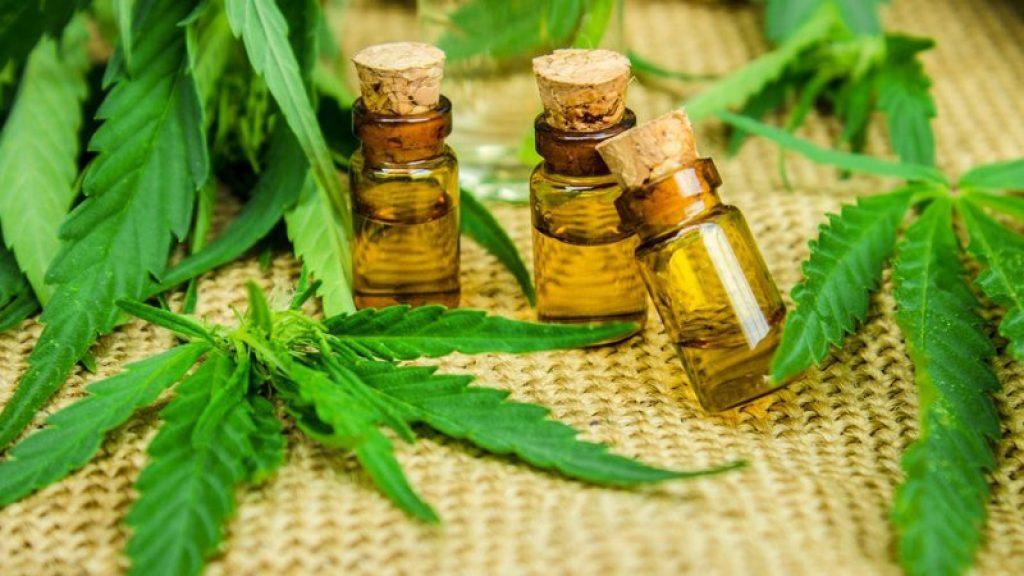cannabis-and-cbd-oil