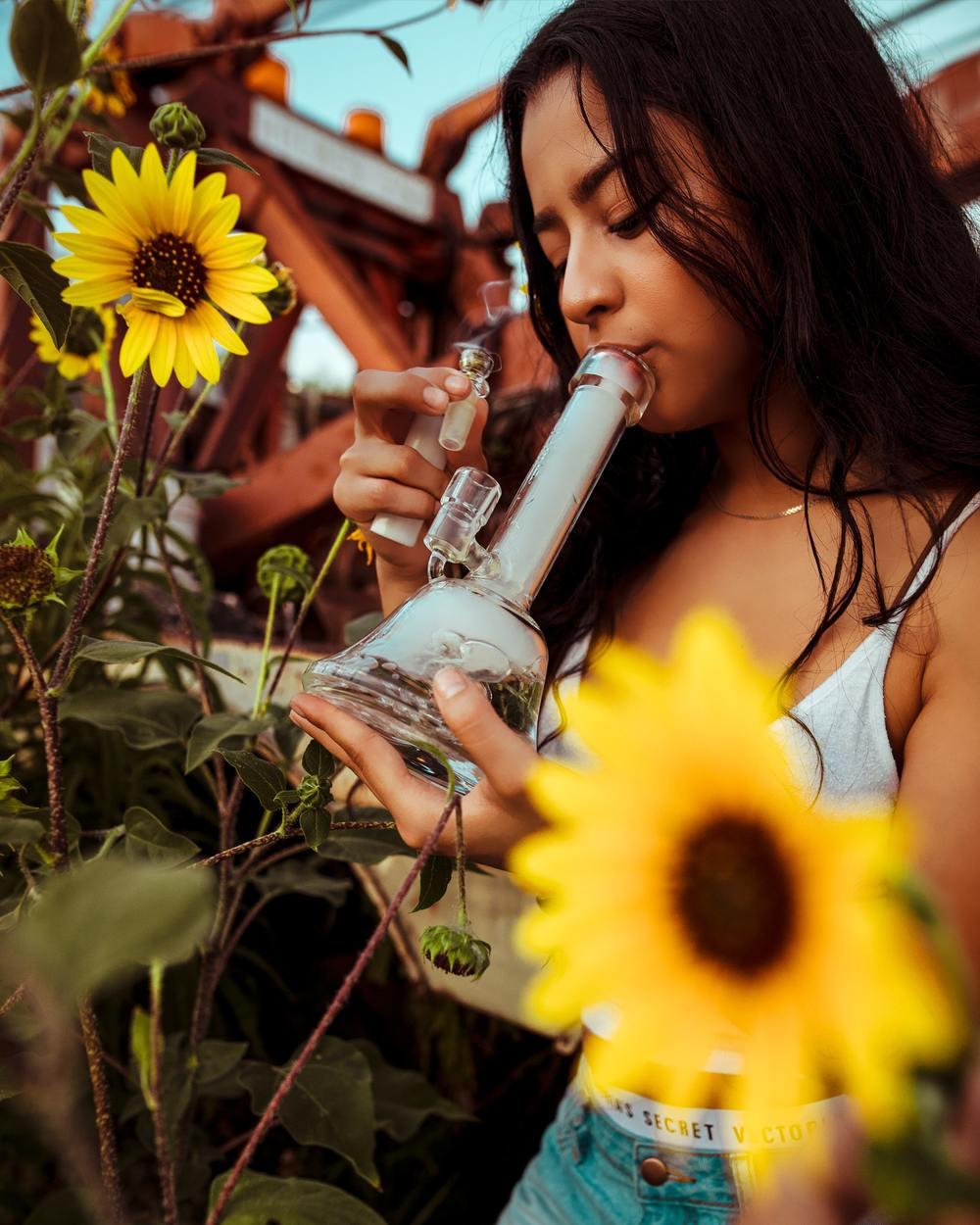 Person smoking a glass bong among sunflowers