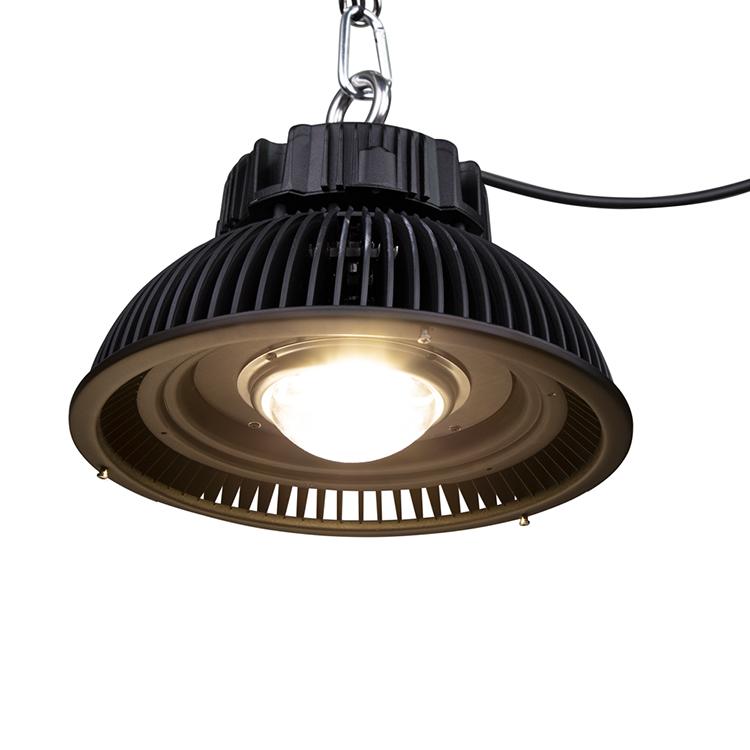 E500 COB LED Grow Light