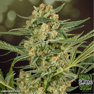 Cheese_Weed_South_Africa