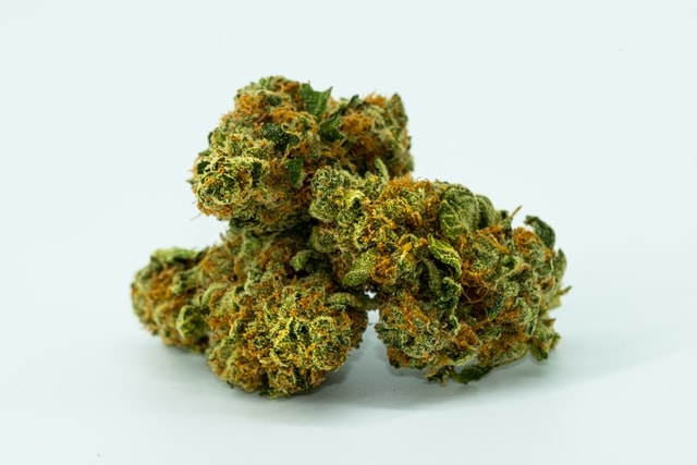 Cheese_Weed