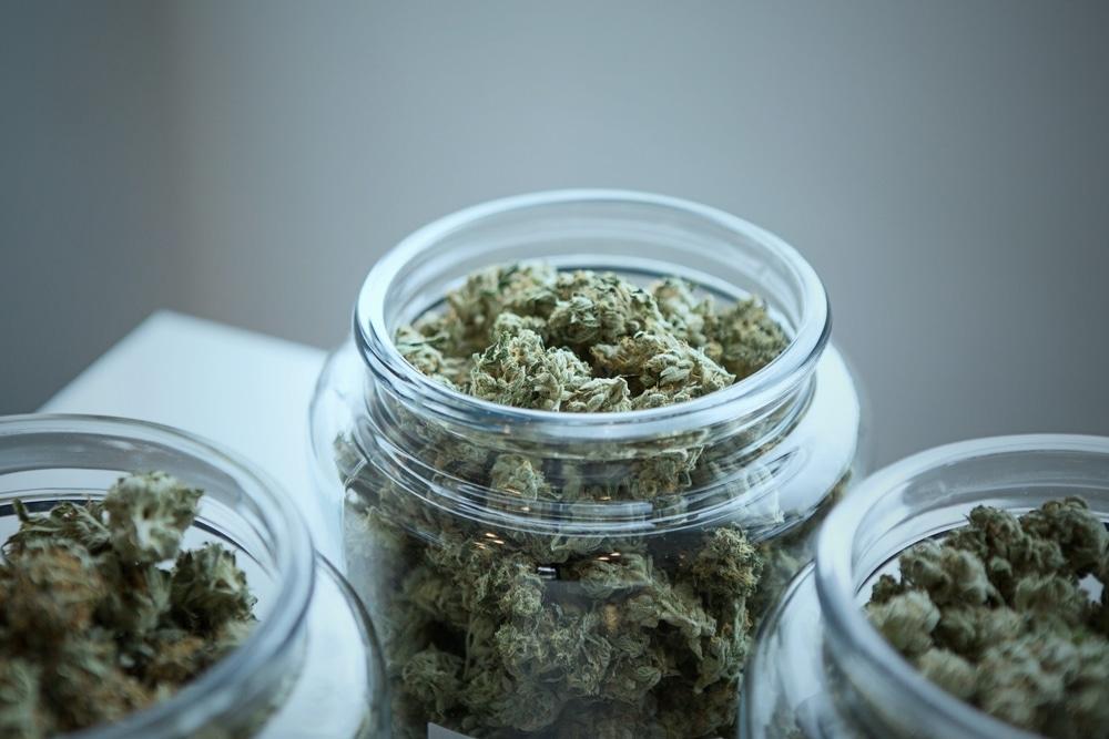 Weed in jars